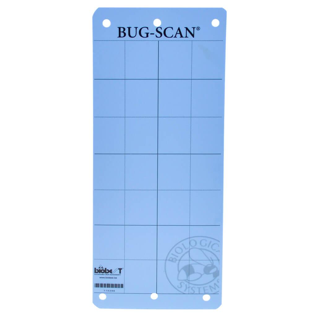 blauwe vangplaat